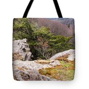 Craigs Of The Mountain Tote Bag