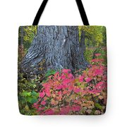 Cranberry Bush And Cottonwood Tree Tote Bag