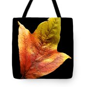 Cranberry Tree Leaf Isolated On White Tote Bag