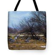 Cranes And Mixed Ducks Tote Bag