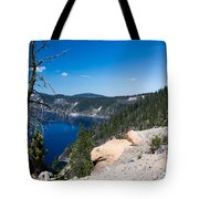 Crater Lake And Moss Covered Tree Tote Bag