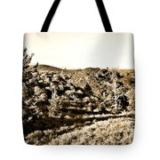 Craters Of The Moon1 Tote Bag