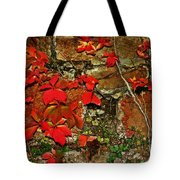 Crawling The Walls Tote Bag