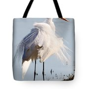 Crazy Egret Feathers Tote Bag