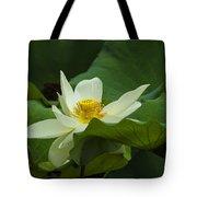 Cream Colored Lotus Tote Bag