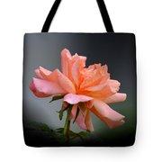 Creamy Peach Rose Tote Bag