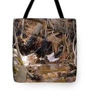 Creek 2 Tote Bag
