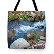 Creek Entering Andreas Canyon In Indian Canyons-ca Tote Bag