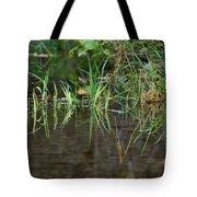 Creek Grass Tote Bag