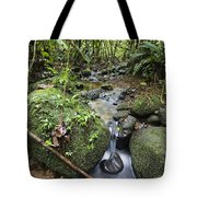 Creek In Mountain Rainforest Costa Rica Tote Bag