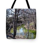 Creek In North Texas Tote Bag