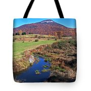 Creek In The Valley Tote Bag