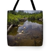 Creek In Vermont Tote Bag
