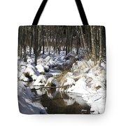 Creek In Winter Tote Bag