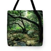 Creek In Woods Tote Bag by Kathy Yates