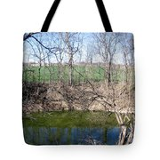 Creek Recovering From Winter Tote Bag