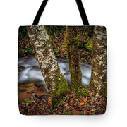 Creek With Trees Tote Bag