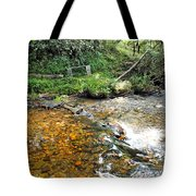 Creekside 4 Tote Bag