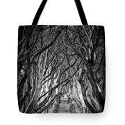 Creepy Dark Hedges Tote Bag