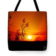Creole Trail Sunset Tote Bag