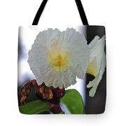 Crepe Ginger Costus Speciosus Tote Bag
