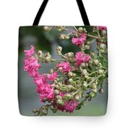 Crepe Myrtle After The Rain Tote Bag