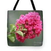 Crepe Myrtle Branch Tote Bag