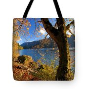 Crescent Through The Woods Tote Bag