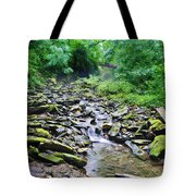 Cresheim Creek Tote Bag