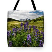 Crested Butte Lupines Tote Bag