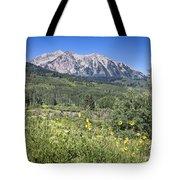 Crested Butte Scenery Tote Bag