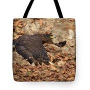 Crested Serpent Eagle Tote Bag