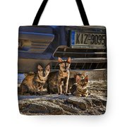 Cretan Cats-1 Tote Bag