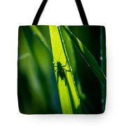 Cricket Silhouette Tote Bag