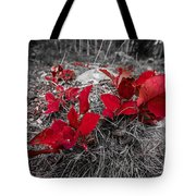 Crimson Foliage Tote Bag