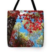Crimson Foliage Tote Bag