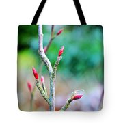 Crisp And Bracing Tote Bag
