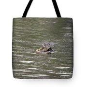 Crocodile   #0579 Tote Bag