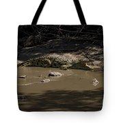 Crocodile   #7282 Tote Bag