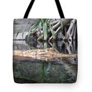 Crocodile Eyes Tote Bag