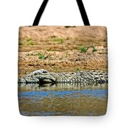 Crocodile In Watering Hole In Kruger National Park-south Africa Tote Bag