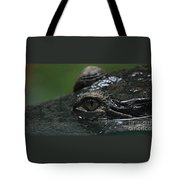 Croc's Eye-1 Tote Bag