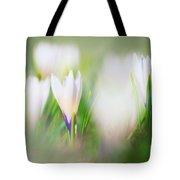 Crocus Meadow 3 Tote Bag