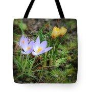 Crocuses In Bloom Tote Bag