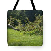 Crooked Apple Tree Tote Bag