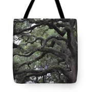 Crooked Branches Tote Bag