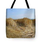 Crop Circle Close-up Tote Bag