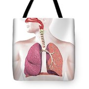 Cross Section Of Human Respiratory Tote Bag