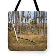 Crossed Trees Tote Bag