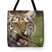Crosseyed Siberian Tiger Cub Endangered Species Wildlife Rescue Tote Bag